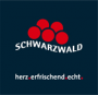 Logo von Belchenhotel Jägerstüble OHG